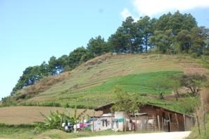 Zona agricola cerca de Trojes
